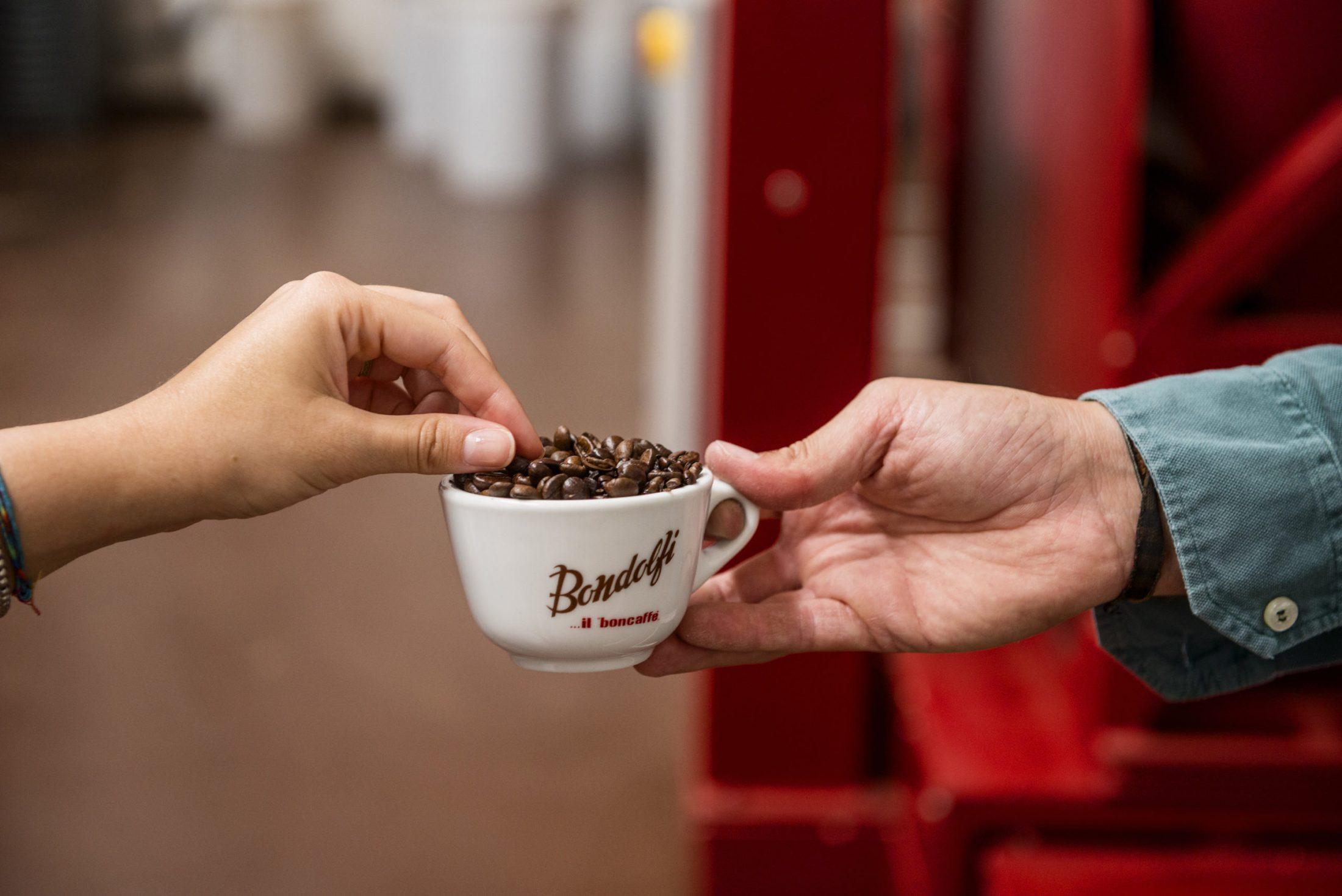 Il chicco di caffè